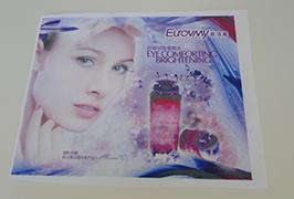 Bayrağı 1.6m (5 fut) eko solvent printeri ilə bənzər parça örtüyü WER-ES160 4