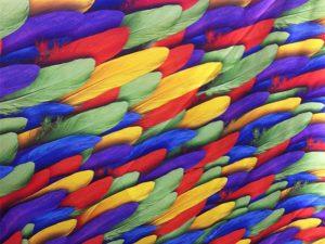 Birtərəfli ev tekstil baskı həlli