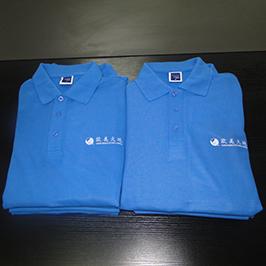 Polo köynəyi A3 tişört printeri WER-E2000T tərəfindən hazırlanmış çap nümunəsi