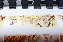 1.8m (6 fut) eko solventli printer WER-ES1802 tərəfindən özünü yapışan Vinil